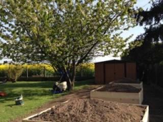 Création de jardin - Yvelines